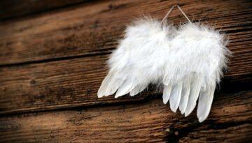 Discover the Secrets of Angels (8 Magical Secrets)
